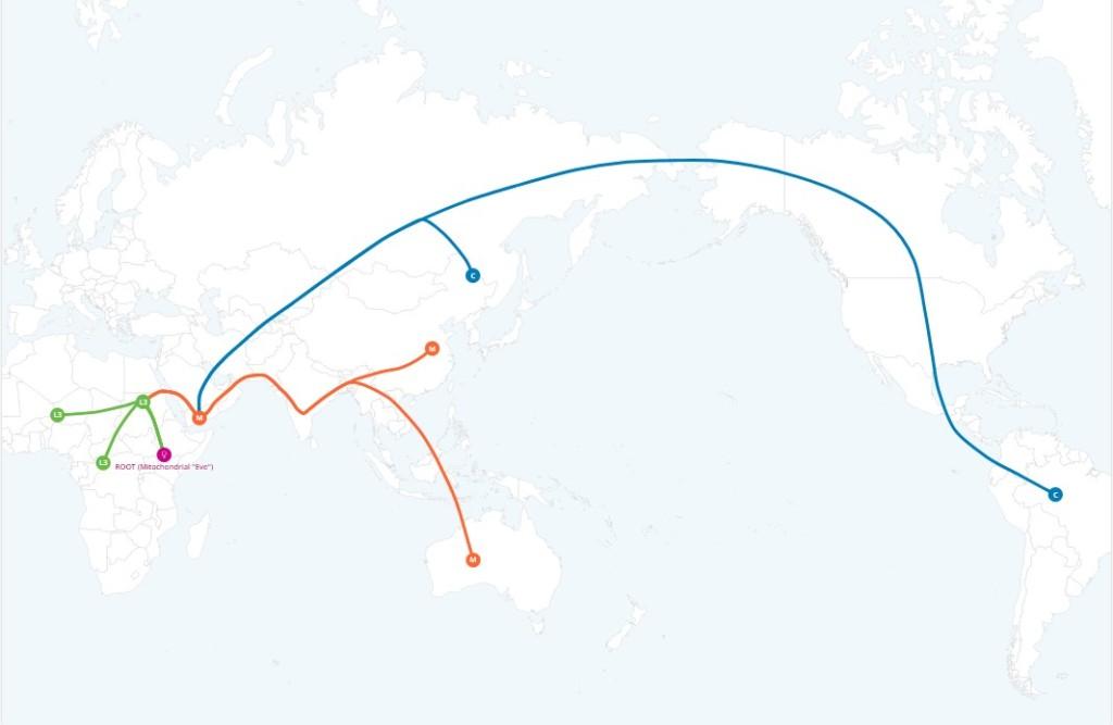 My DNA ancestry result shows that… – UighurDNA